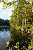 Lake and lush and verdant forest in Finland Royalty Free Stock Image