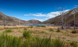 Lake Lyndon, on the Arthurs Pass, Southern Alps, South Island of New Zealand. Korowai-Torlesse Tussocklands Park Royalty Free Stock Photos