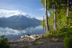 Lake MacDonald in Glacier National Park. The shore of Lake MacDonald in Glacier National Park Stock Image