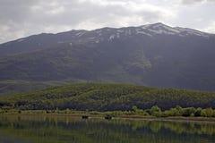 Lake in Macedonia Royalty Free Stock Photo