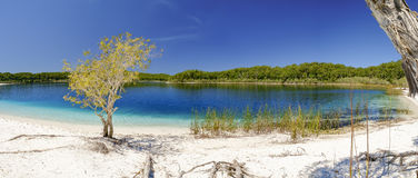 Lake Mackenzie. Wide angle panorama of Lake Mackenzie on Fraser Island showing aquamarine fresh waters on a bright summer day Stock Photos