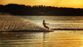 Lake Macquarie water skier. LAKE MACQUARIE,AUSTRALIA - JANUARY 25,2015: A water-skier enjoys a run down the lake at sunset Royalty Free Stock Photos