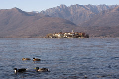 Lake Maggiore landscape Stock Photos