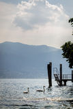 Lake Maggiore. At sunset, Italy stock images