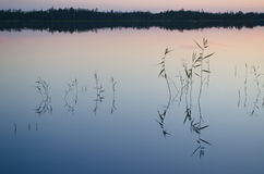 Lake Magrino in Karelia, Russia Royalty Free Stock Images