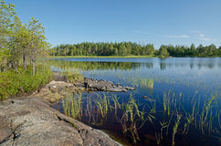 Lake Magrino in Karelia Stock Photos