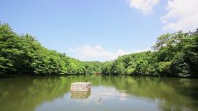 Lake in Maksimir park, Zagreb, Croatia. Lake in Maksimir park suronded with trees, Zagreb, Croatia stock footage