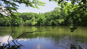 Lake in Maksimir park, Zagreb, Croatia. Lake in Maksimir park suronded with trees, Zagreb, Croatia stock video