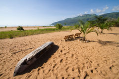 Lake Malawi beach. A scenic beach next to lake malawi with palm trees, soft sand and a dugout canoe Stock Photos