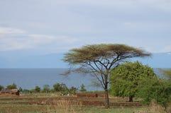 Lake Malawi - Malawi Stock Images