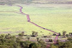 Lake Manyara National Park Royalty Free Stock Images