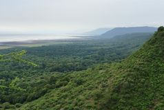 Lake Manyara National Park in Africa Stock Images