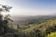Lake Manyara National Park Royalty Free Stock Image