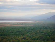 Lake Manyara safari in Afric Royalty Free Stock Image