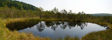 Lake in the marsh Royalty Free Stock Photos