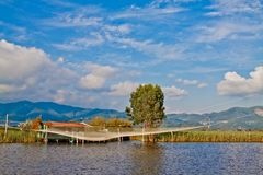 Lake of Massaciuccoli Stock Images