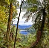 Lake Matheson, New Zealand - HDR image Stock Photography