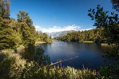 Lake Matheson, New Zealand Royalty Free Stock Images