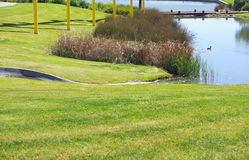 Lake at Mawson Lakes Royalty Free Stock Images