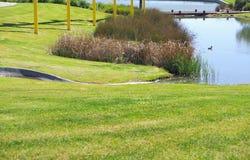 Lake at Mawson Lakes Royalty Free Stock Images