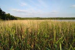 Lake in Mazury Region Poland Royalty Free Stock Photos