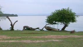 Lake Mburo National Park Stock Image
