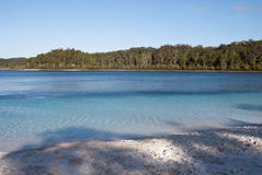 Lake Mc Kenzie, Fraser Island, Australia Royalty Free Stock Photo