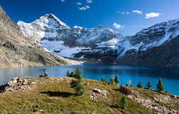 Lake McArthur Royalty Free Stock Images