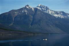 Lake McDonald Fishing Glacier National Montana Royalty Free Stock Image