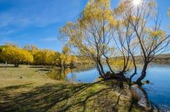 Lake McGregor,Canterbury Region, New Zealand Stock Images