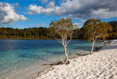 Lake McKenzie on Fraser Island, Australia. A picture of the beach of Lake MacKenzie on Fraser Island in Queensland, Australia Royalty Free Stock Images