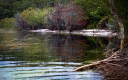 Lake McKenzie Reflections Royalty Free Stock Photo