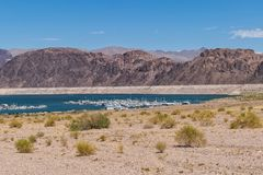 Lake Mead Nevada Shoreline royalty free stock images