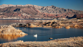Lake Mead and Powerboat Stock Photo