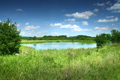 Lake and meadow Royalty Free Stock Images