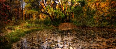 Lake of mermaids. Autumn landscape, lake in a wood. HDR image Royalty Free Stock Photography