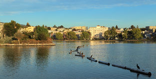Lake Merritt. Looking east across Lake Merritt, Oakland, California Stock Photo