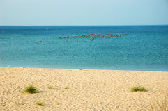 Lake Michigan. Shoreline beach on Lake Michigan in the USA royalty free stock photos