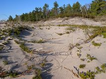 Lake Michigan Beach. Sand dunes at Point Beach State Park, Wisconsin Royalty Free Stock Image