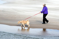 Lake michigan dog walker Royalty Free Stock Photos