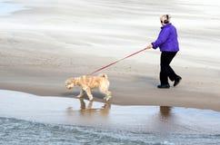 Lake michigan dog walker Royalty Free Stock Photos
