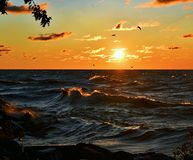 Lake Michigan soluppgångfotografi Royaltyfri Bild