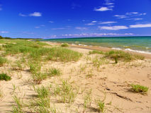 Lake Michigan strandlandskap Royaltyfri Fotografi