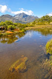 Lake in Milford Sound. New Zealand Royalty Free Stock Photography