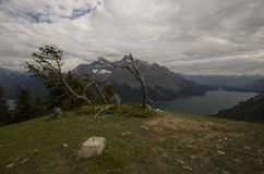 Lake Minnewanka Trail Royalty Free Stock Photos
