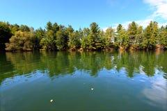 Lake Minocqua Wisconsin. Pine trees along the shoreline of Lake Minocqua in northwoods Wisconsin royalty free stock photos