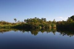 Lake Mirror Image Reflection. Trees and bushland mirror image reflected in still blue lake Stock Image