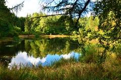 Lake mirror Stock Images
