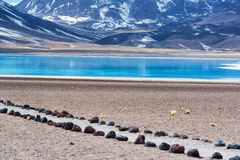 Lake Miscanti in Chile Stock Photo