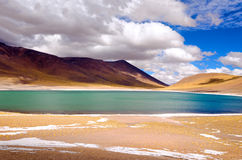 Lake Miscanti in Chile Royalty Free Stock Photo